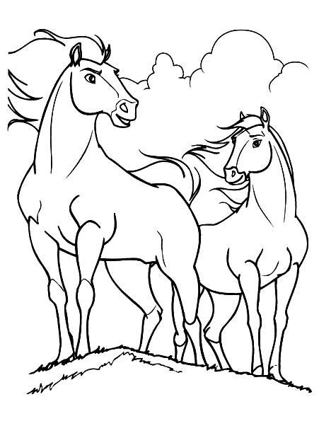 Planse De Colorat Cu Animale Domestice Calul