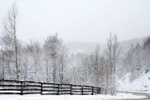 Poezii De Iarna Pentru Copii Iarna Pe Ulita
