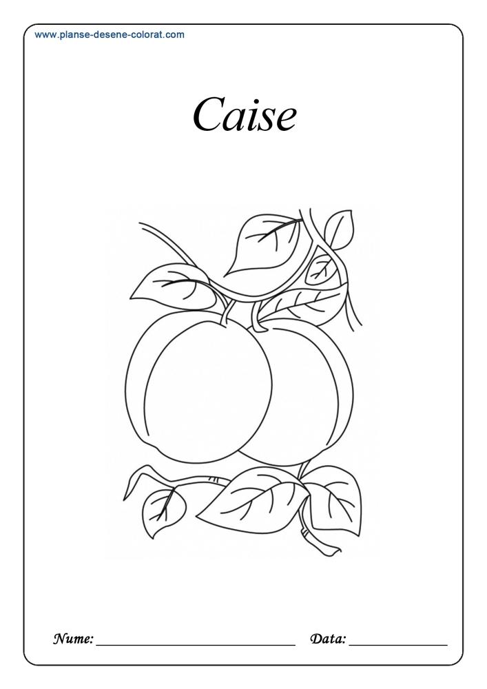 Desene de colorat cu fructe 12