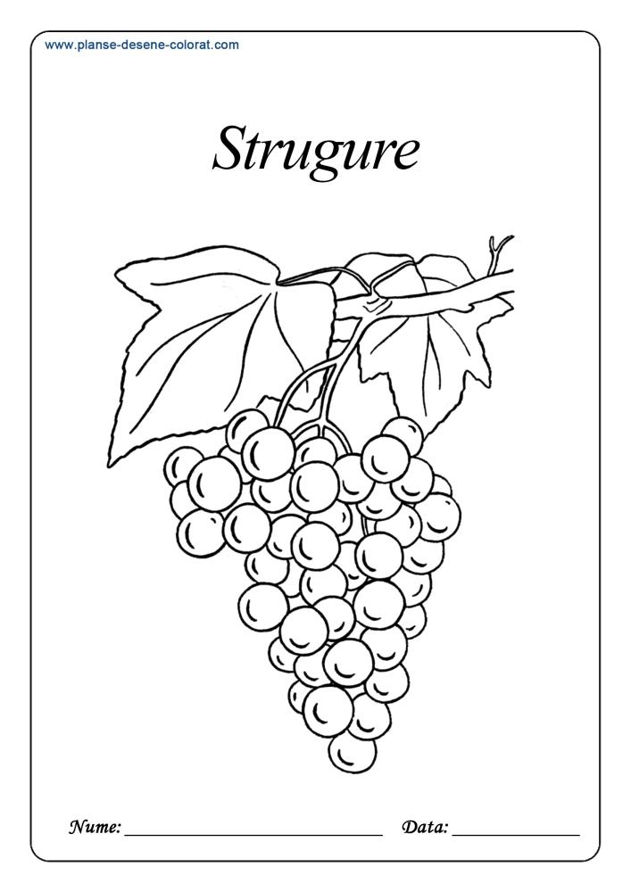 Desene de colorat cu fructe 7
