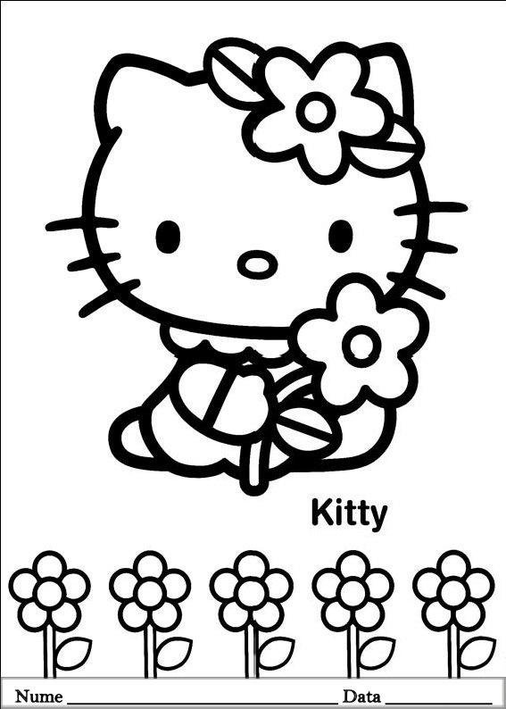 HELLO KITTY  (15)