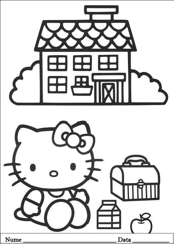 HELLO KITTY  (3)