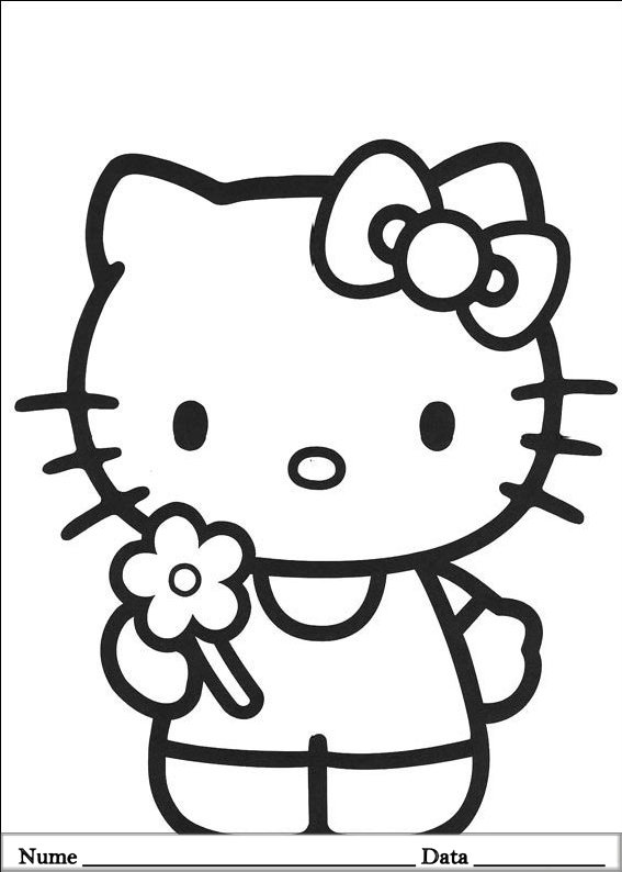 HELLO KITTY  (8)