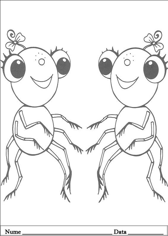 MISS SPIDER  (13)