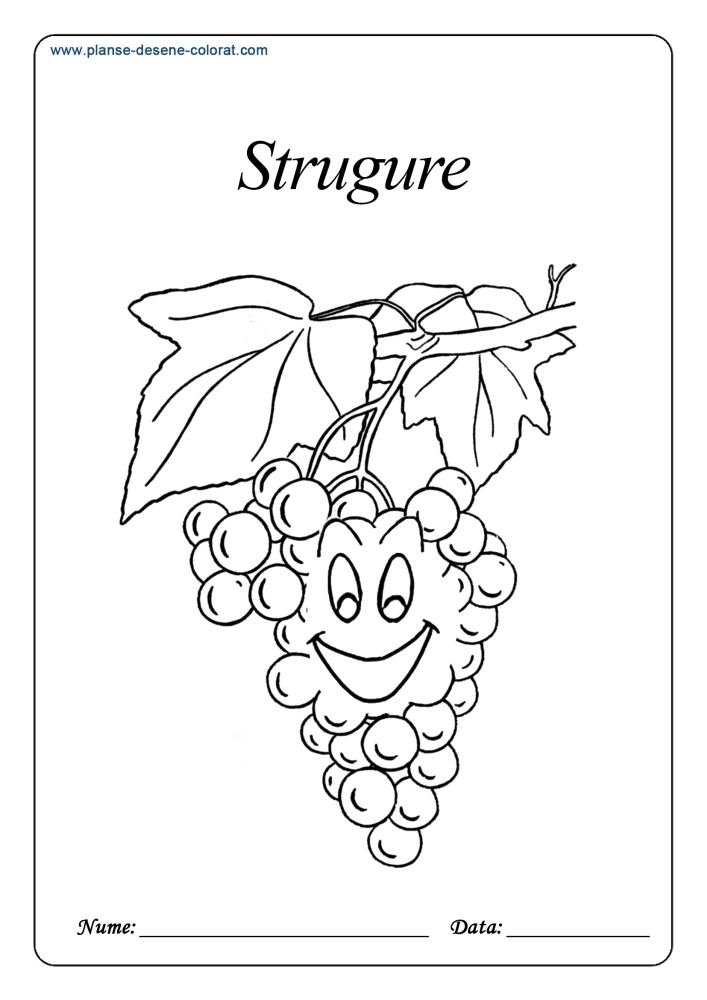 Planse de colorat cu fructe vesele 5