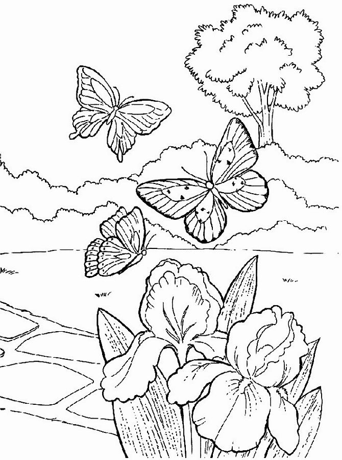 Planse desene de colorat primavara 3