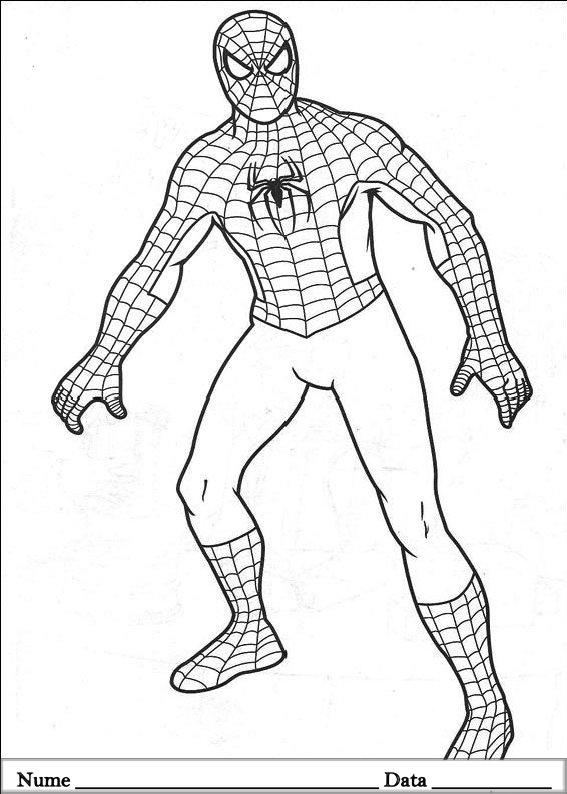 SPIDERMAN  (28)