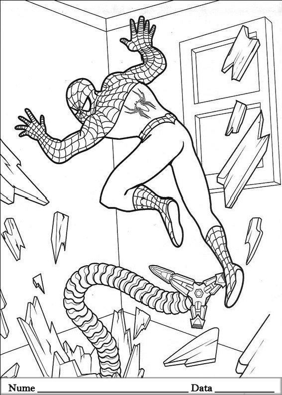 SPIDERMAN  (41)