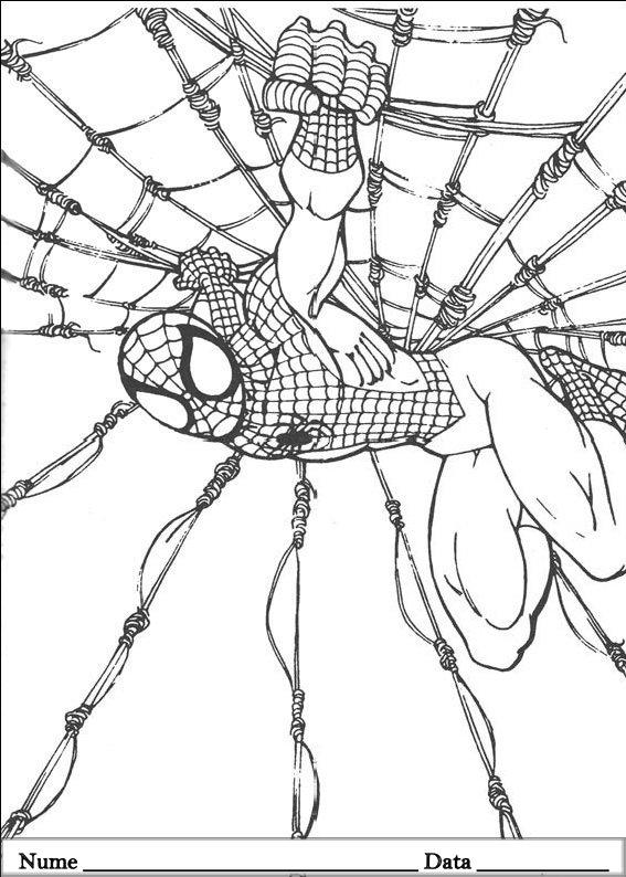 SPIDERMAN  (44)