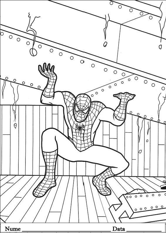 SPIDERMAN  (47)