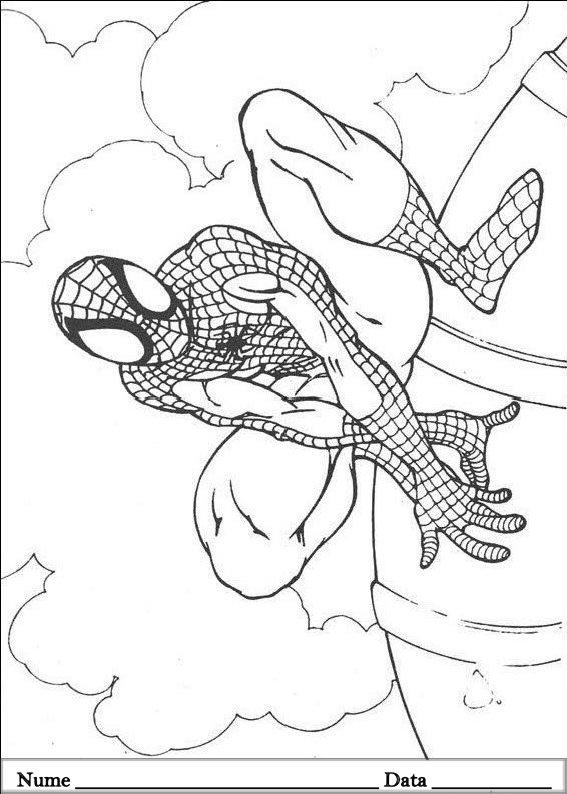 SPIDERMAN  (7)