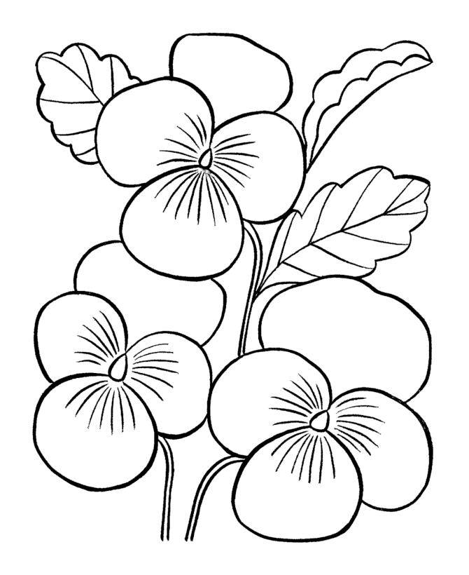 desene de colorat cu flori 10