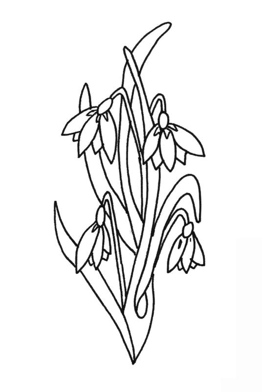 desene de colorat cu flori 7