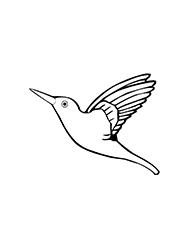 planse de colorat cu pasari colibri