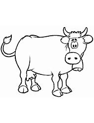 planse de colorat cu vaci