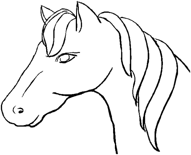 planse desene de colorat cal 13