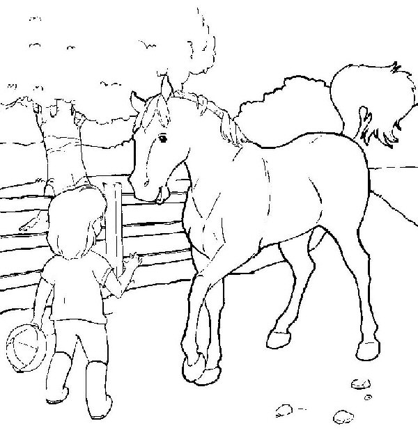 planse desene de colorat cal 38