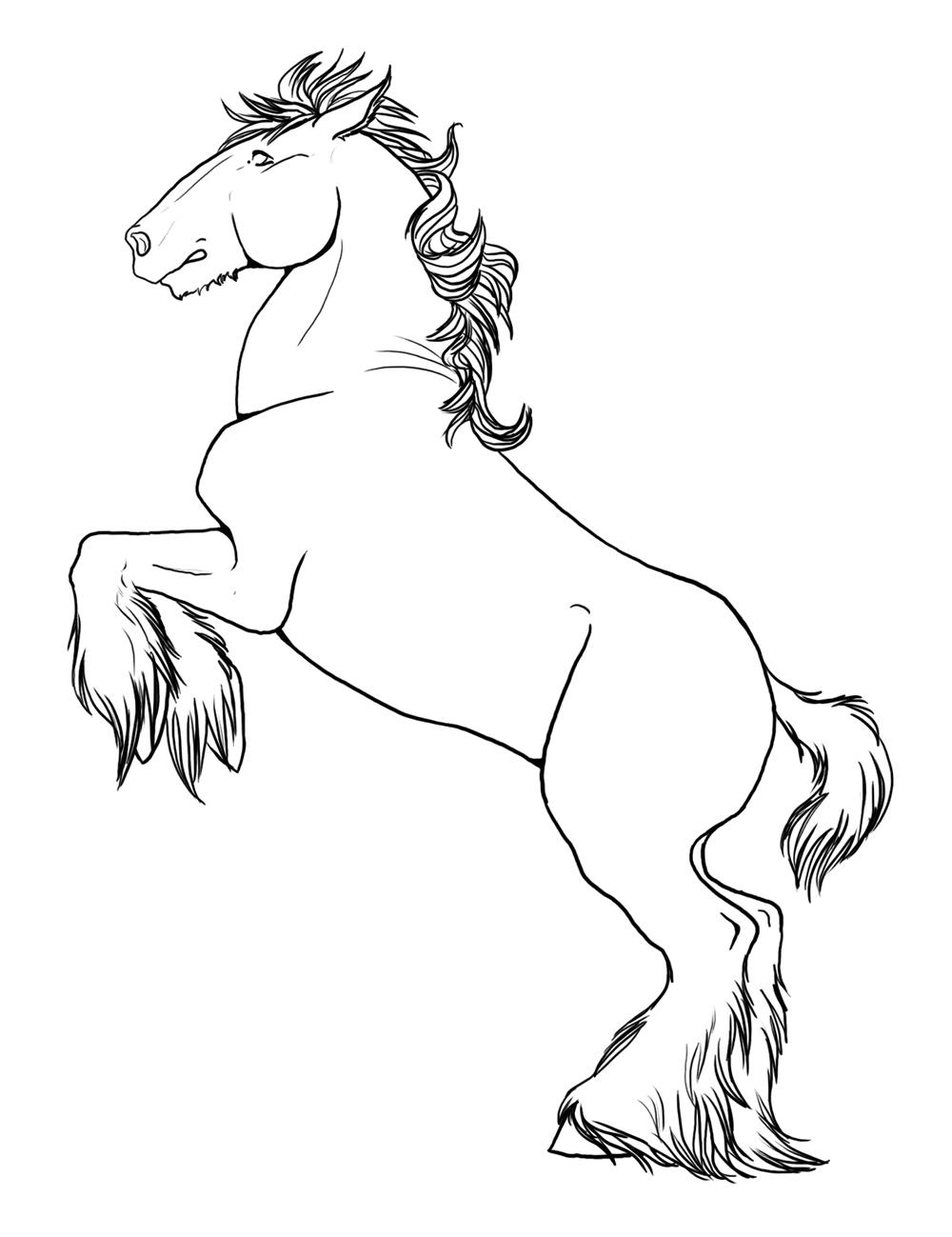 planse desene de colorat cal 45