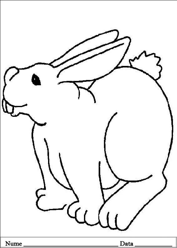 planse desene de colorat cu iepurasi de pasti 15