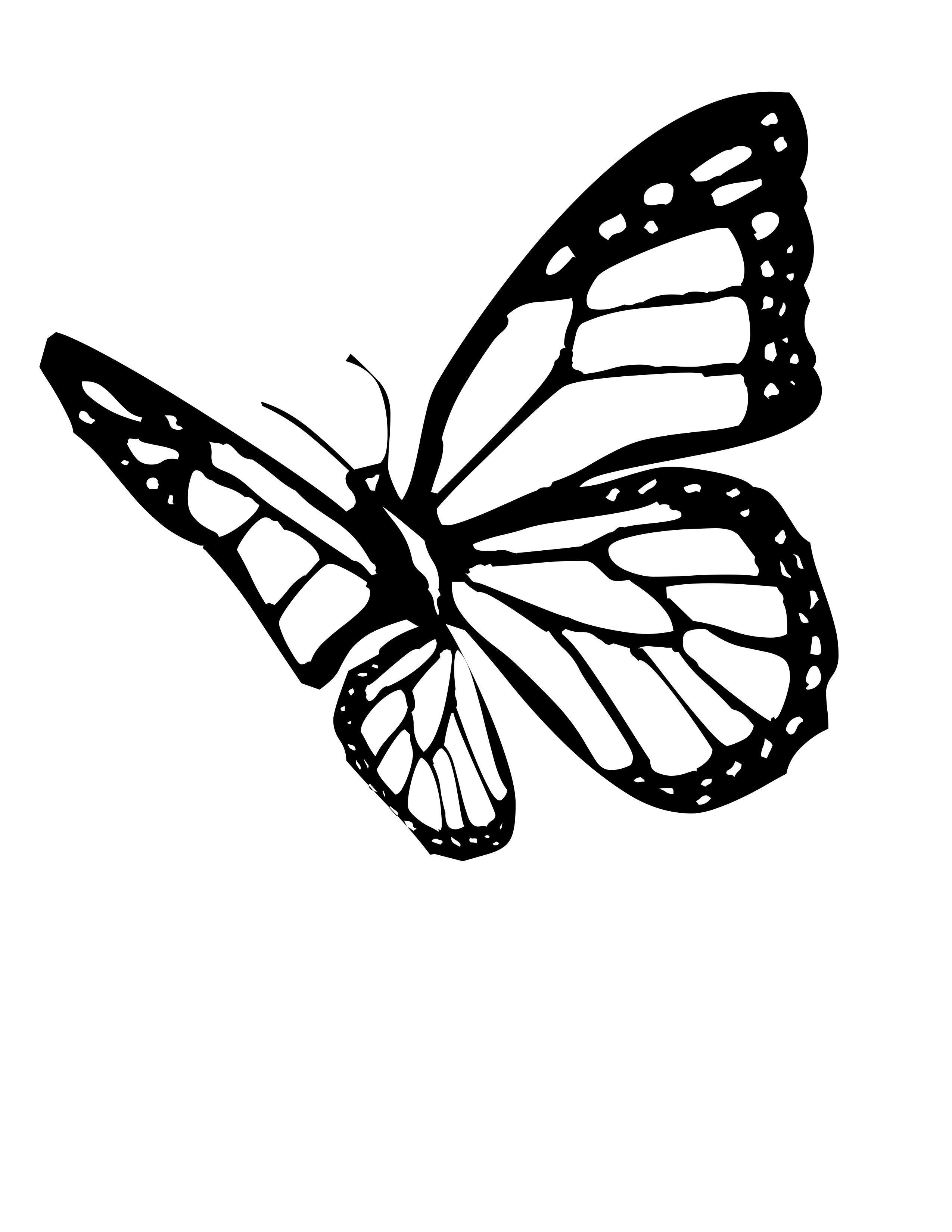 planse desene de colorat fluture 9