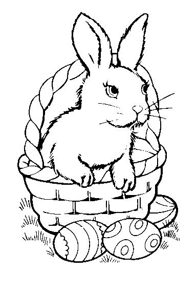 planse desene de colorat iepure 11