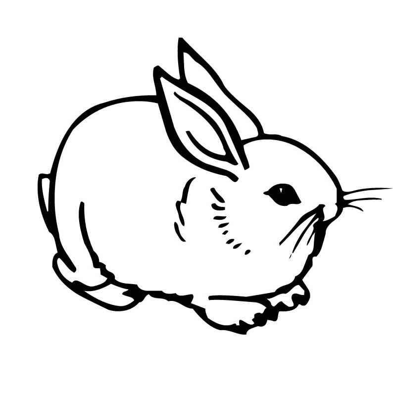 planse desene de colorat iepure 13