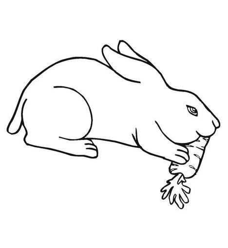 planse desene de colorat iepure 15