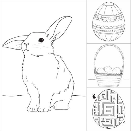 planse desene de colorat iepure 20