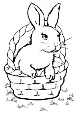 planse desene de colorat iepure 24