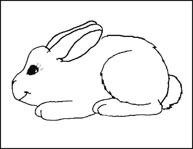 planse desene de colorat iepure 25