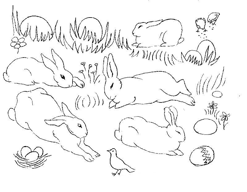 planse desene de colorat iepure 38