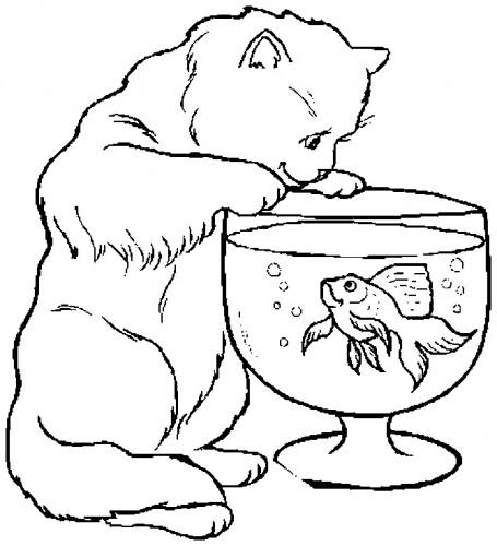 planse desene de colorat pisica 26