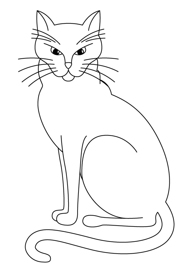 planse desene de colorat pisica 37