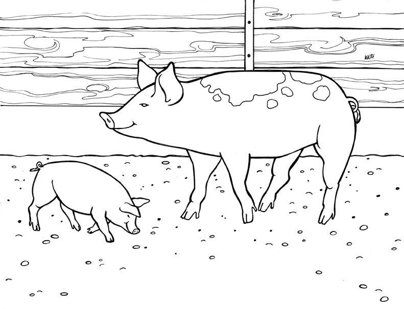 planse desene de colorat porc 18