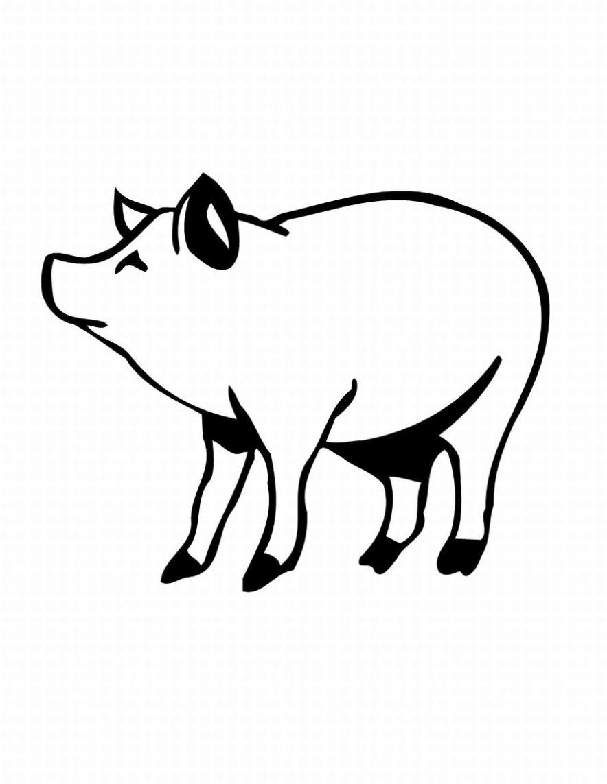 planse desene de colorat porc 7
