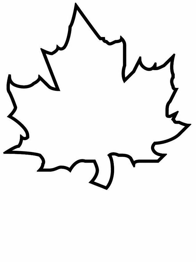 planse desene de colorat toamna frunze 26