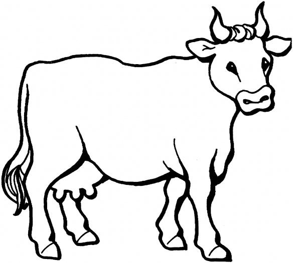 planse desene de colorat vaca 12