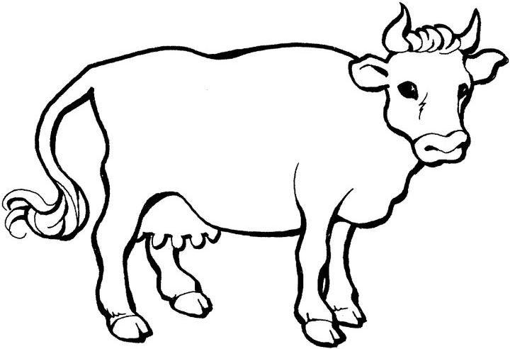 planse desene de colorat vaca 13