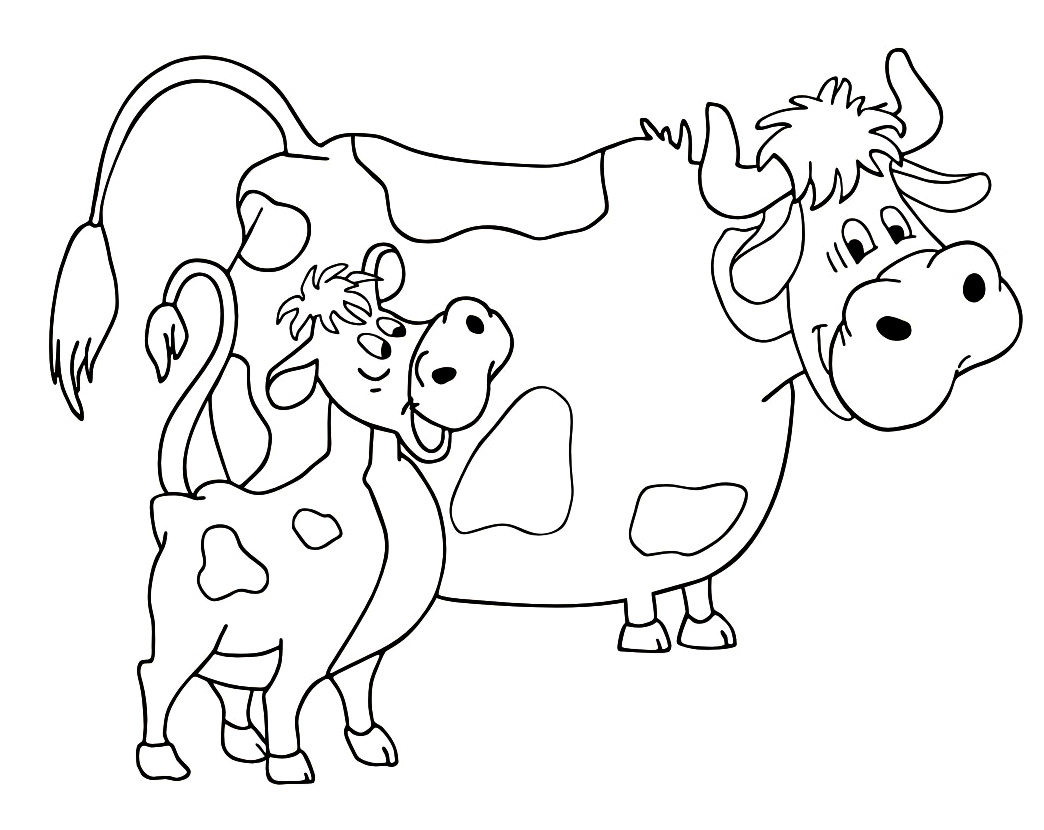 planse desene de colorat vaca 14