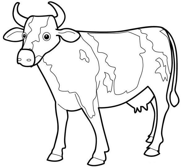 planse desene de colorat vaca 20