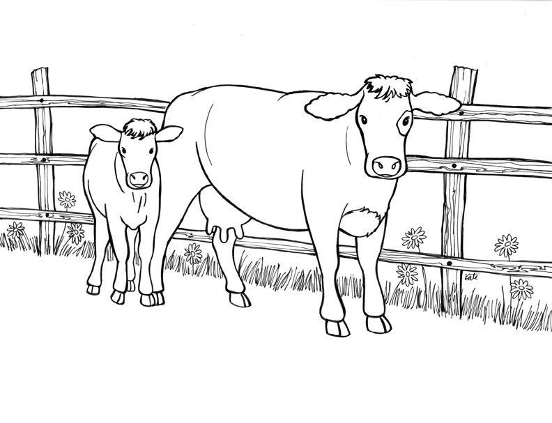 planse desene de colorat vaca 5